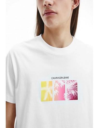 Calvin Klein Jeans Men's Palm Tree...